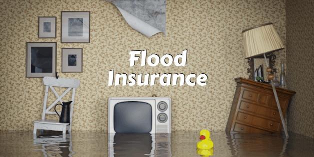 Best Flood Insurance in Newport, KY